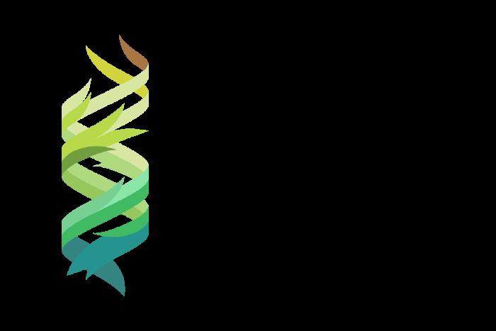 Leisner Lab logo